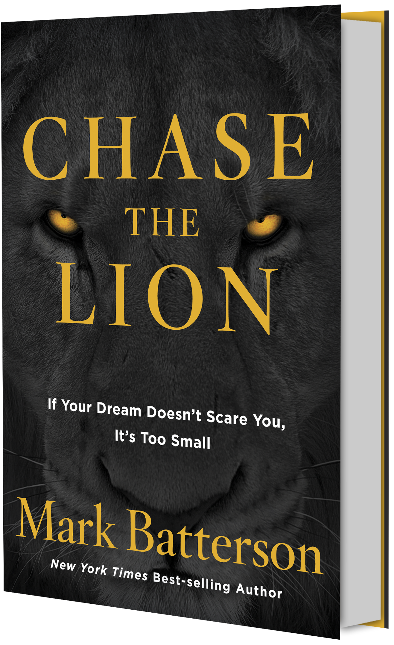 Chase The Lion | Mark Batterson
