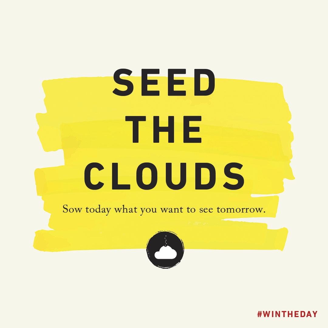 WIN THE DAY - Seed the Clouds